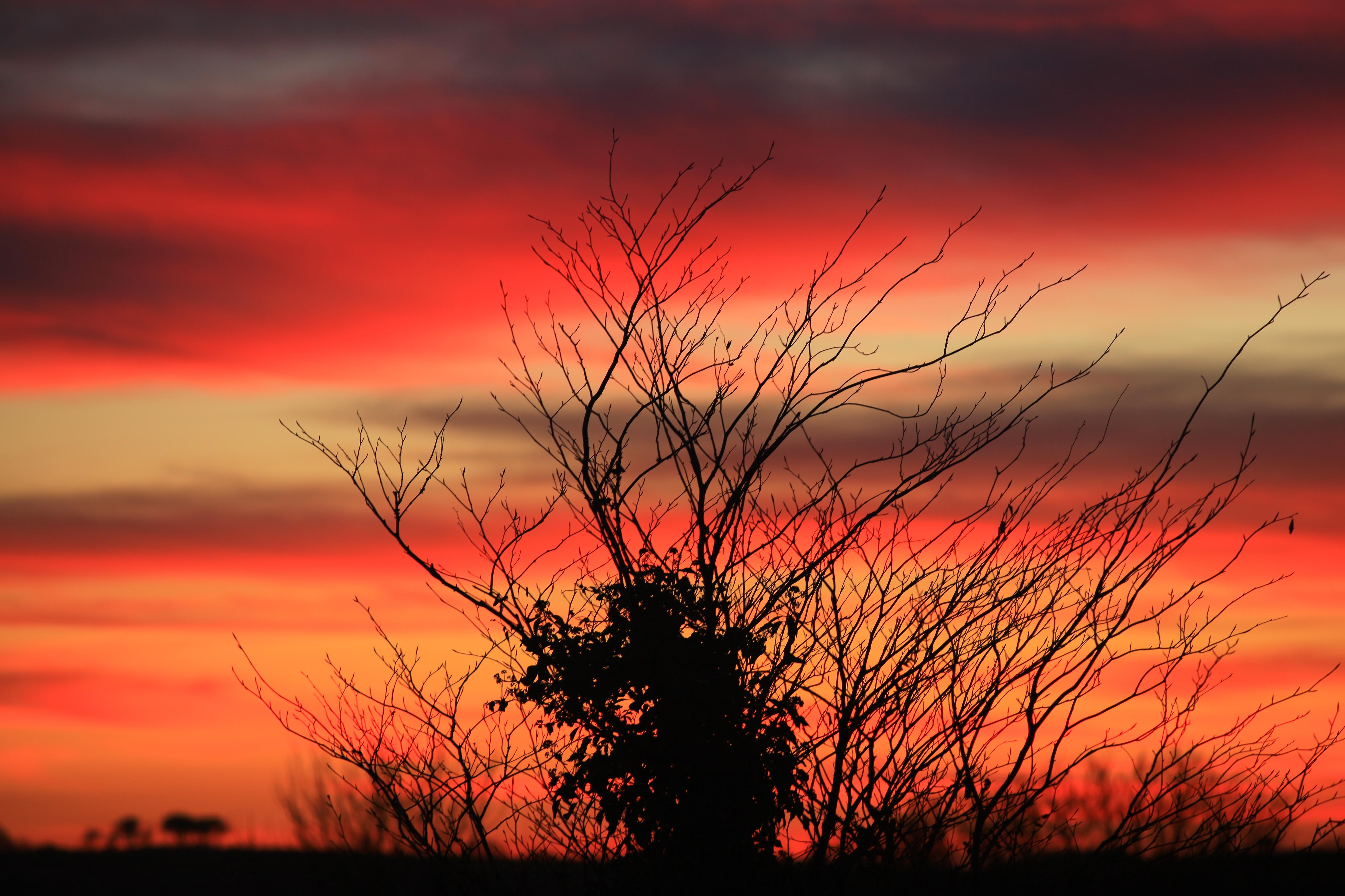 Iwian. Sunset